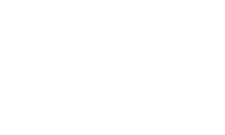 North East Simulation Network Logo